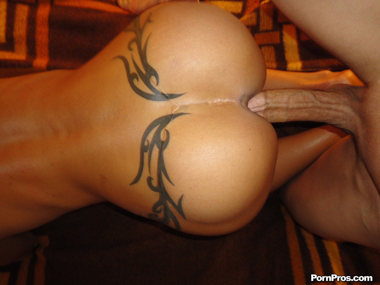Hotwife getting pounded by bbc 5 7